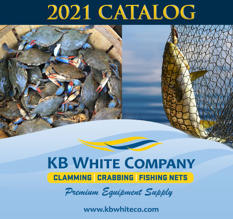 KB White Co Wholesale Shellfishing Equipment Catalog